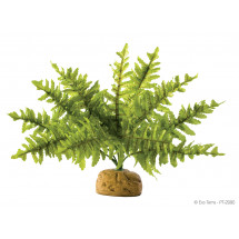 Растение ExoTerra Boston Fern small фото